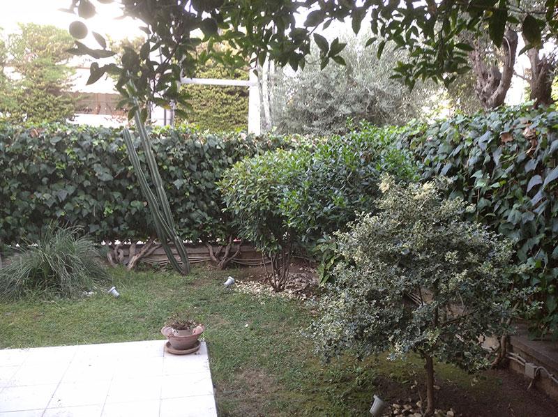 Κήπος στο Μοσχάτο