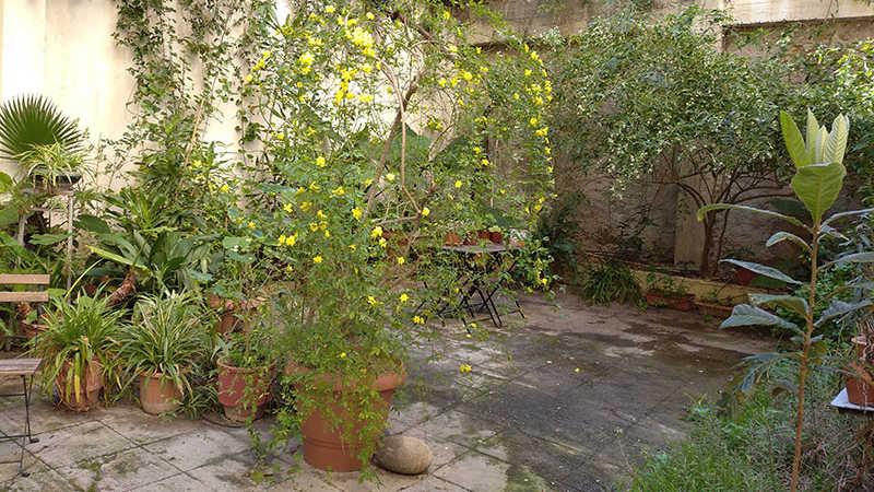 Κήπος στο κέντρο